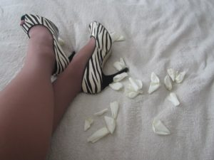zebra print shoes