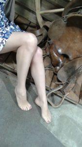 Calgary Stampede 2017 pantyhose 5 den ultra sheer